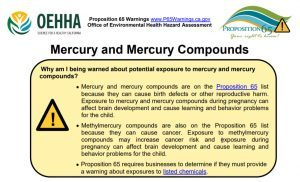 Mercury and birth defects